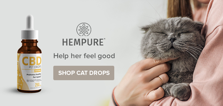 cbd drops for cats