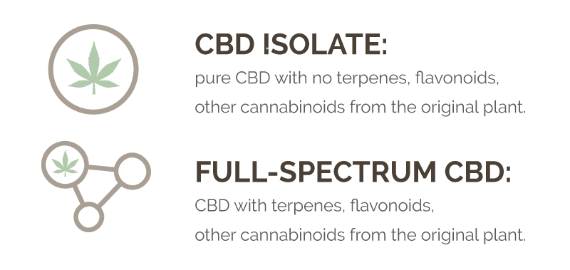Difference between CBD isolate and full spectrum
