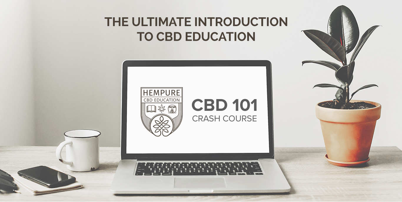 CBD Crash Course | Learn Everything About CBD in 10 Days