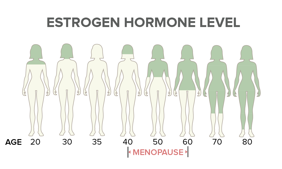 Estrogen Hormone Level Between Ages
