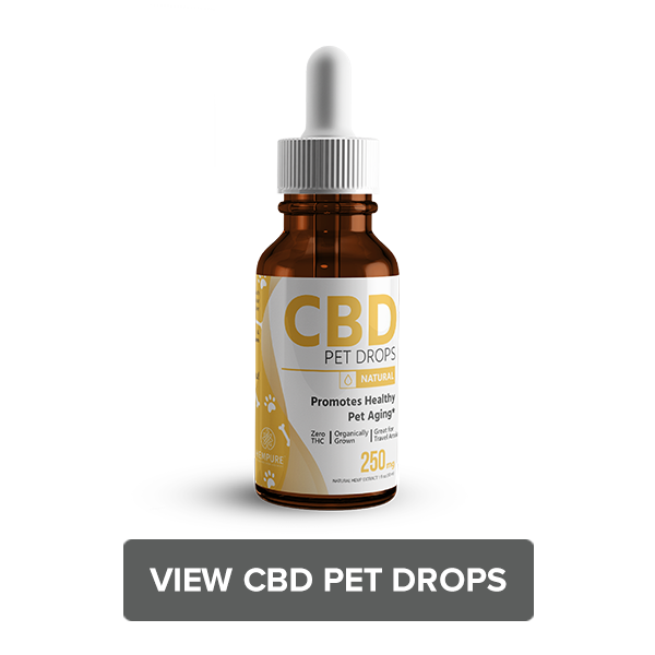 Shop CBD Pet Drops