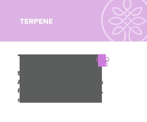 terpineol